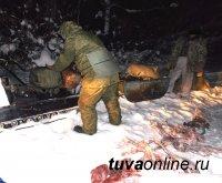 Задержаны два кызылчанина с незаконно добытыми косулями