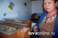 В Кызыле пятеро безработных получили субсидию на открытие своего дела