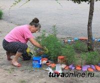 Минимум и максимум для благоустройства дворов - Минстрой России