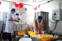 Объем господдержки сельской кооперации Тувы в 2016 году составил 45,2 млн. рублей