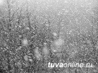 В Туве 3 марта ожидаются сильный снег и гололедица на дорогах