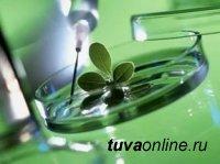 В Туве пройдет семинар по инновационным технологиям в животноводстве и растениеводстве