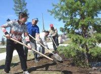 В Туве с 15 апреля объявлен месячник по озеленению городов и поселений
