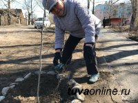 В Туве в рамках месячника планируют посадить более 2 тысяч саженцев деревьев