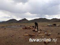 Студенты сельхозфакультета ТувГУ помогли байтайгинскому чабану по хозяйству