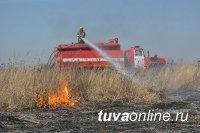 В Туве мужчина оштрафован за брошенный окурок, из-за которого загорелась сухая трава