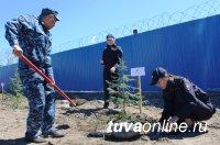 Кызылчанка Лидия Бендрик: «Газон – это не парковка!»