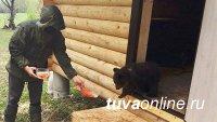 В нацпарке Башкирии приютили медвежонка из Тувы