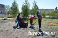В Кызыле проходят субботники в поддержку Года экологии в России