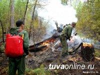 В Туве стоит жара выше 35 градусов, введен режим ЧС в лесах