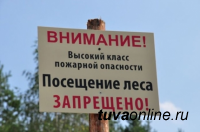 В лесах Тувы сохраняются высокие классы пожарной опасности. Посещение леса запрещено
