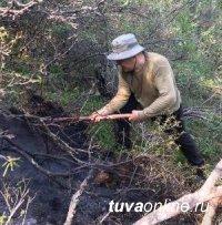 Глава региона Шолбан Кара-оол объехал горящие леса в районах Тувы