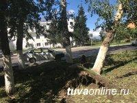 В Кызыле идет уборка улиц от поваленных сильным ветром и градом деревьев и опавшей листвы