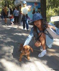Выставка домашних животных в День города 9 сентября