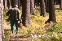 Сборщик ягод, поиски которого в лесах Кызылского района Тувы велись в течение 6 дней, самостоятельно вышел к людям