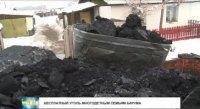 В Туве за счет бюджета обеспечат углем и дровами на зиму более 700 многодетных семей