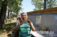 Победа тувинского журналиста во Всероссийском фотоконкурсе