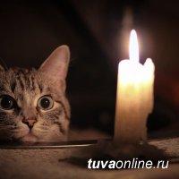 В Туве кот оставил без света более 8.5 тысяч человек