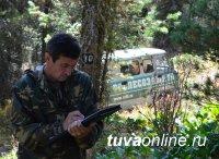 """За состоянием тайги рядом с месторождением """"Кызыл-Таштыг"""" ведет контроль Рослесозащита"""