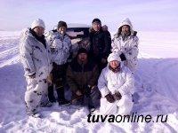 В Туве объявлена охота на серого хищника