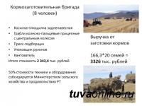 Проект создания в Туве «молочных» сел, привязанных к цехам по переработке молока, предложен Минэкономики и Минсельхозом республики