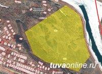 Общественная палата Тувы проводит публичные слушания по вопросу придания городским лесам статуса «зеленого щита» Кызыла