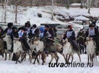Обнародованы итоги гонок на оленях на фестивале в Тодже