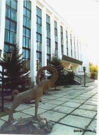 После жалобы жителя Тувы Банк России оштрафовал страховую компанию