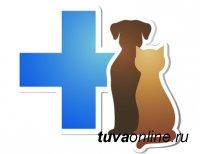 Что необходимо для открытия ветеринарной аптеки