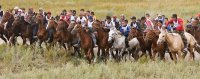 Глава Тувы потребовал от организаторов конных скачек обеспечить все правила безопасности