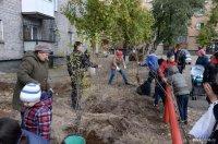 В Мэрии Кызыла от Управляющих компаний и ТСЖ принимают заявки на завоз земли для благоустройства дворов