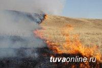 В Кызылском, Дзун-Хемчикском и Тоджинском районах  участковыми уполномоченными полиции установлены виновники степных пожаров