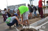 Школьники Кызыла участвуют в преображении одной из самых в недавнем прошлом «убитых» дорог столицы – Ангарского бульвара