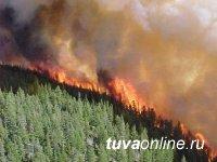 В Тоджинском кожууне Тувы зарегистрировано три лесных пожара
