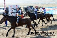 Конные скачки на Наадыме в Туве - впервые в онлайн-трансляции