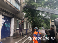В Туве активисты общества защиты животных освободили после полугодового плена собаку, подняв бетонное крыльцо