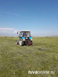 Тува: В районном состязании Чаа-Хольского кожууна по кормозаготовоке лидирует районный центр