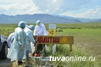 Глава Тувы Шолбан Кара-оол проинспектировал работы по ликвидации очага сибирской язвы в Барун-Хемчикском районе