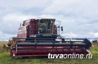 В Туве заготовлена половина плановых объемов кормов