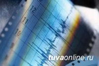 В Кызыле зафиксировано землетрясение магнитудой 3