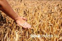 С 1 января 2019 года сельхозтоваропроизводители могут получить освобождение от уплаты налога на добавленную стоимость