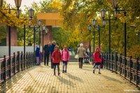 Новый федеральный закон мотивирует наращивание площади «зеленых щитов» в городах России