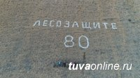 """На горе Белдир в окрестностях Кызыла выложена каменная кладь """"Лесозащите - 80"""""""