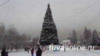 Жители столицы Тувы сами определили место под главную елку