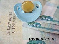 Тува: о выплатах госпособий опекунам и приемным родителям в январе 2019 года