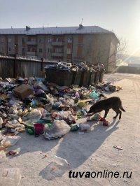 Депутаты Кызыла инициируют расторжение договора с Регоператором по обращению и утилизации отходов