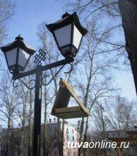 Кызыл: Пополняйте кормушки в Национальном парке и Молодежном сквере города