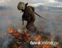 """После малоснежной зимы в Туве ожидается высокая пожароопасность. Глава Тувы выступил против """"палов"""" травы"""