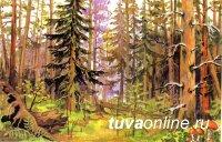 Конкурс детских рисунков «Лес – наш главный интерес» стартовал в Туве