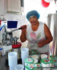 В малом бизнесе Тувы и индивидуальном предпринимательстве занято более 20 тысяч человек